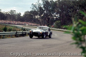 65438 - R. Thorp  AC Cobra  - Warwick Farm May 1965 - Photographer Richard Austin