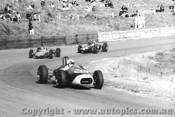 68549 - P. Cohen - Jolus Minx - Catalina Park Katoomba 1968