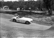 58426 - J. Cleary Austin Healey 100S -  Templestowe 7th Sept. 1958