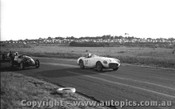 60404 - J. Cleary Austin Healey 100S -  Phillip Island 18th September 1960