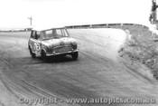 64732  - D. Holland / L. Stewart -  Morris Cooper -  Bathurst 1964