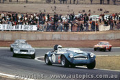 70446 - R. Bond Austin Healey / M. Angliss Milano GT / B. Leer Milano GT  - Oran Park 20th September 1970 - Photographer Jeff Nield