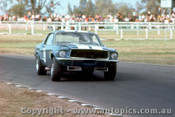 68096 - Fred Gibson Ford Mustang - Warwick Farm 8th September 1968 - Photographer Jeff Nield