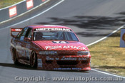 95729 - Kevin Heffernan  Holden Commodore VP - Bathurst 1995