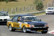 80748  -  I. Geoghegan / P. Gulson  -  Bathurst 1980 - 3rd Outright - Holden Commodore VC