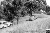63010 - B. Seton Mercedes 220 SE / B. Burns Jaguar 3.4 / J. Suttor Jaguar 3.8 - Bathurst 15th April 1963 - Photographer Bob Collinson
