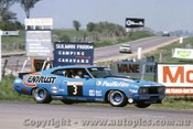 78800 -  J. Goss /  H. Pescarolo - Ford  Falcon XC GT  - Bathurst 1978 - Photographer Lance  Ruting