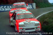 84785  -  Harvey / Parsons   -  Bathurst 1984 - 2nd Outright Winner - Holden Commodore VK   - Photographer Lance J Ruting