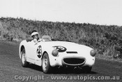 60411 - J. Roxburgh - Austin Healey - Phillip Island - 23rd October 1960 - Photographer Peter D Abbs