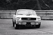 66075 - P. Fahey Ford Mustang - Warwick Farm  1966 - Photographer Lance J Ruting