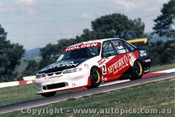 96736 - M. Skaife / J. Cleland -  Holden Commodore VR -  Bathurst 1996