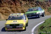 81771 - G. Willmington / M. Griffin - B. O Brein / G. Cooke - Falcon XD  Bathurst  1981 - Photographer Lance J Ruting