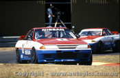91016 - J. Richards  & M. Skaife Nissan GTR - Sandown 1991 - Photographer Peter D Abbs