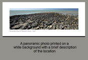 Stromatolites at Hamelin Pools -  W.A - Product Code 30002 - Photographer David Blanch