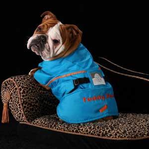 Teddy Bear loves her Zentek Coat!