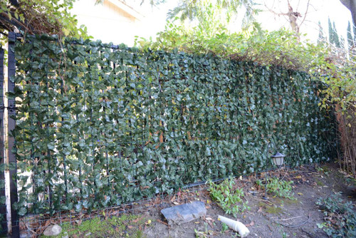 Dramatic Danica Double Sided Ivy Roll - EZ 8038 -FREE SHIPPING (5' tall X 10' wide)