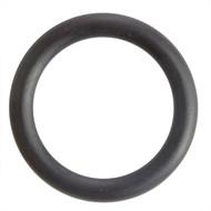 "3/4"" Black EPDM ""DIN"" Style Sanitary Gasket"