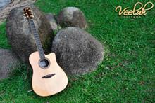 Veelah V6 Dreadnaught Acoustic w LR Baggs EAS VTC