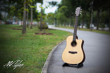 M.Tyler Guitars MTD-300 CEQ w/ Fishman Preamp Acoustic Guitar