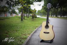 M.Tyler Guitars MT D110 CEQ w/ M.Tyler SFEQ Acoustic Guitar