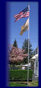 Veterans Flag Depot - 16 Foot 13 Gauge Aluminum Telescoping Flagpole