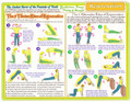 Rejuvenation 5 Rites  Chart - Rainbow Laminated 8.5 x11