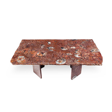 Coffee Table Fossil Marble