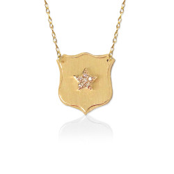 Brushed Gold Quatrefoil with Diamond Star