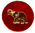 "Gold-plate Elephant on a red enamel coin shape. Size: 1.25"". Pin back."