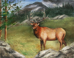 V1112 Painting the Elk- Wildlife Education Series