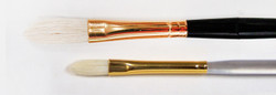 Bristle Filbert Brushes