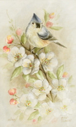 DVD6001 Watercolor Titmouse