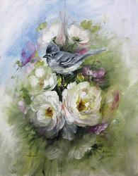 V1081 Beginner's Guide to Birds, Penelope's Flycatcher- Download