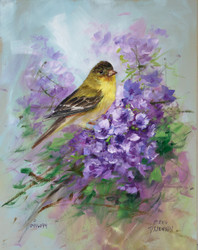 Goldfinch and Jacaranda
