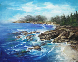 V5031 Painting Rocky Coastlines Download