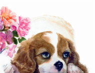 The original image was painted with watercolor by Jody O'Meara.