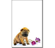 Note Pad | Sharpei | Roscoe