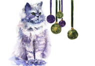 Small Stretched Canvas | Persian Cat