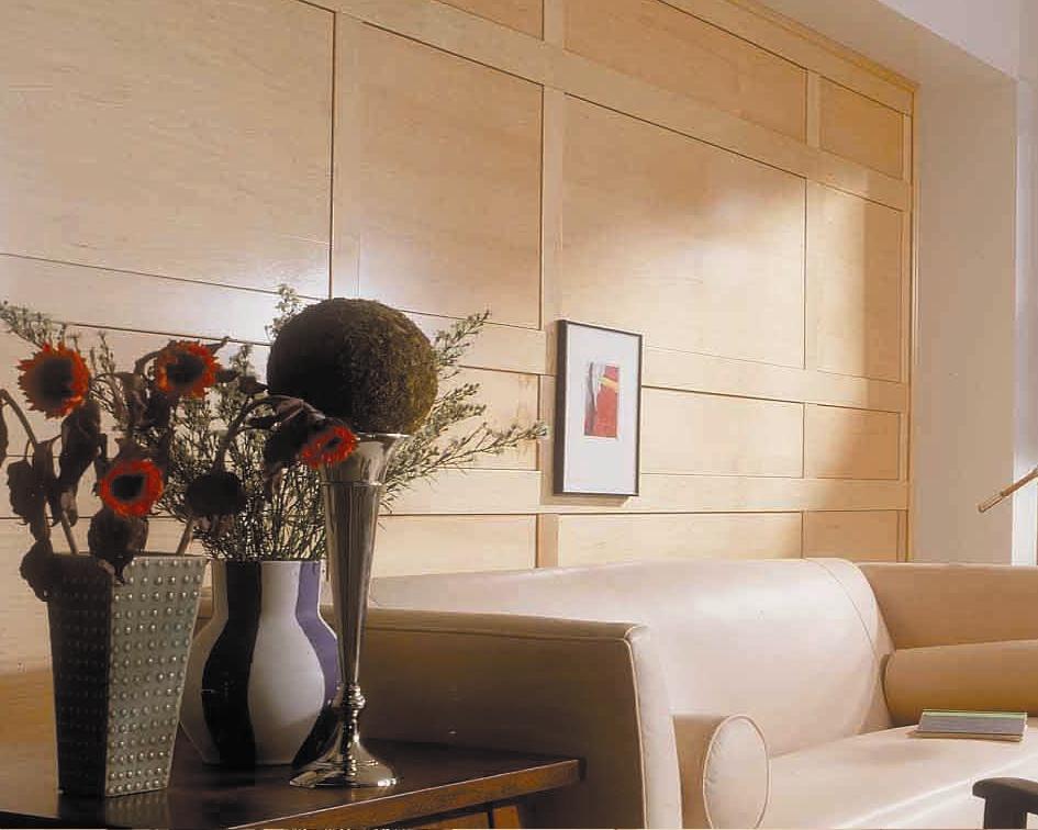 living-rm-modern-paneling.jpg