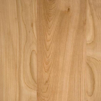 Natural Birch finished Library Paneling (no grooves)