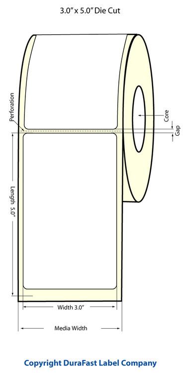 Epson TM-C3500 3x5 High Gloss Label Roll | Epson Media | 811016