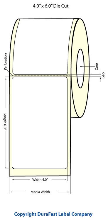 Epson TM-C3500 4x6 High Gloss Label Roll | Epson Media | 811022