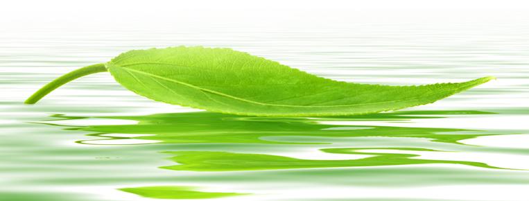 natural-leaf.jpg
