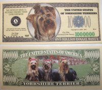 Yorkshire Terrier One Million Dollar Bill
