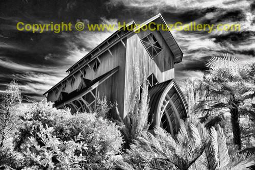 """Baughman Rising"" ● Infrared Photography"