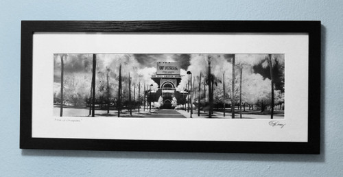 """Arena of Champions"" ● Framed 21¼""x9¼"""