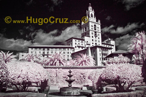 """Biltmore View"" ● Infrared Photography"
