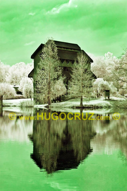 """Reflective Baughman"" ● Infrared Photography"