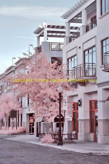 """Camino Rosa"" ● Infrared Photography"