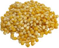 Popcorn 5 lb. bag